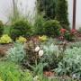 12-Декоративна растителност