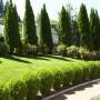 Поддръжка на тревна настилка и декоративна растителност