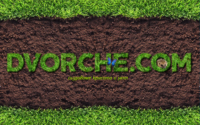 Dvorche.com - we create beauty and comfort