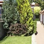 с. Пожарево - обновяване на занемарени градински площи