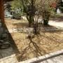 Озеленяване на частен двор в с. Пожарево