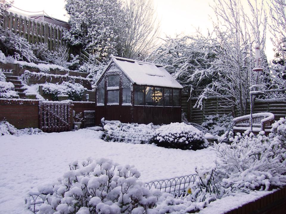 Градината през зимата